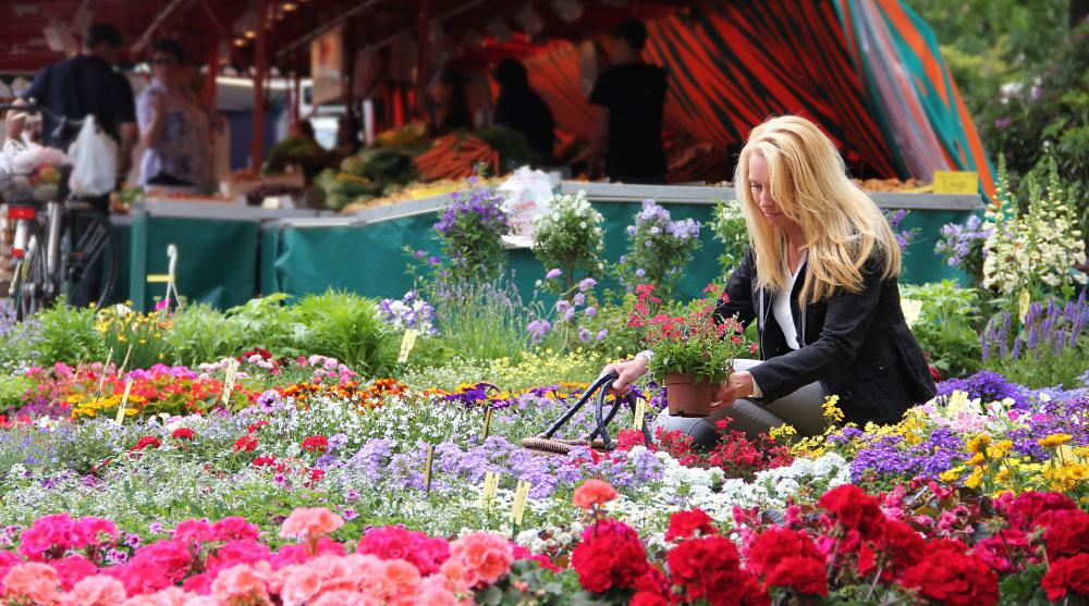 Wochenmarkt jeden Freitag in Rastede