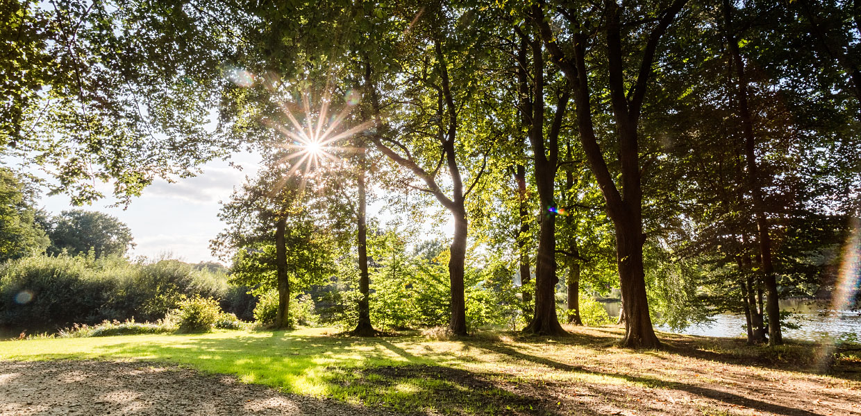 Schlosspark Ellernteich Rastede