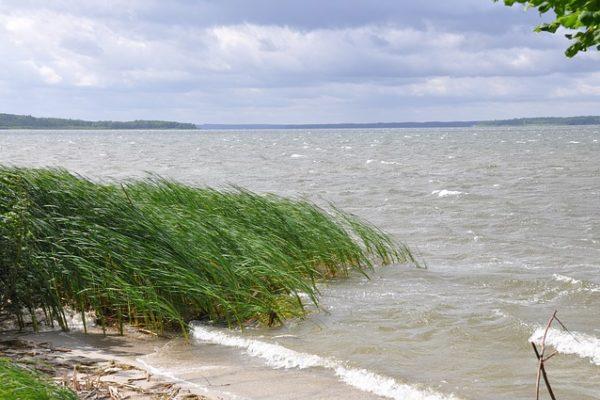 Erlebnisreiche Sommerferien am Schweriner See