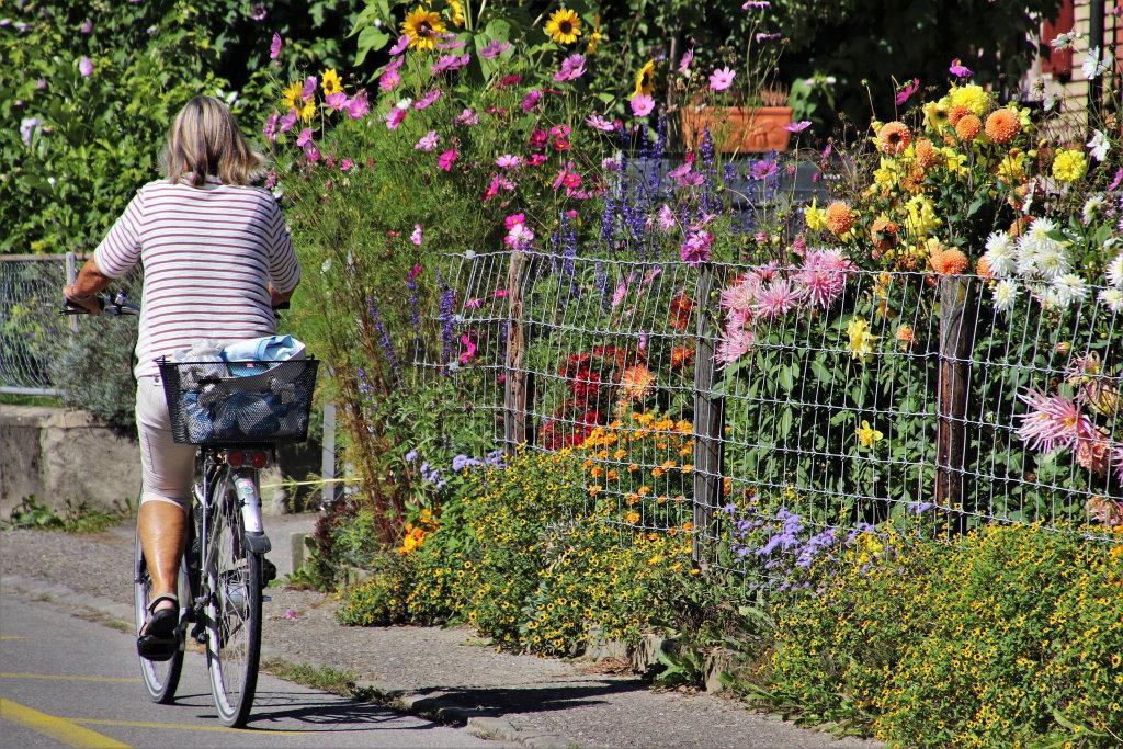 Rasteder Radfahrerinnen und Radfahrer